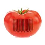 Shop-Icon
